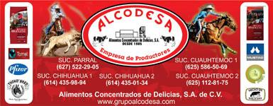 banner-alcodesa-385